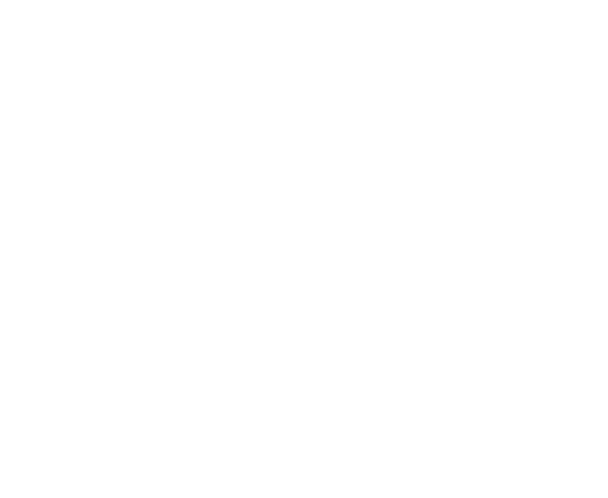 Concept Data Solutions